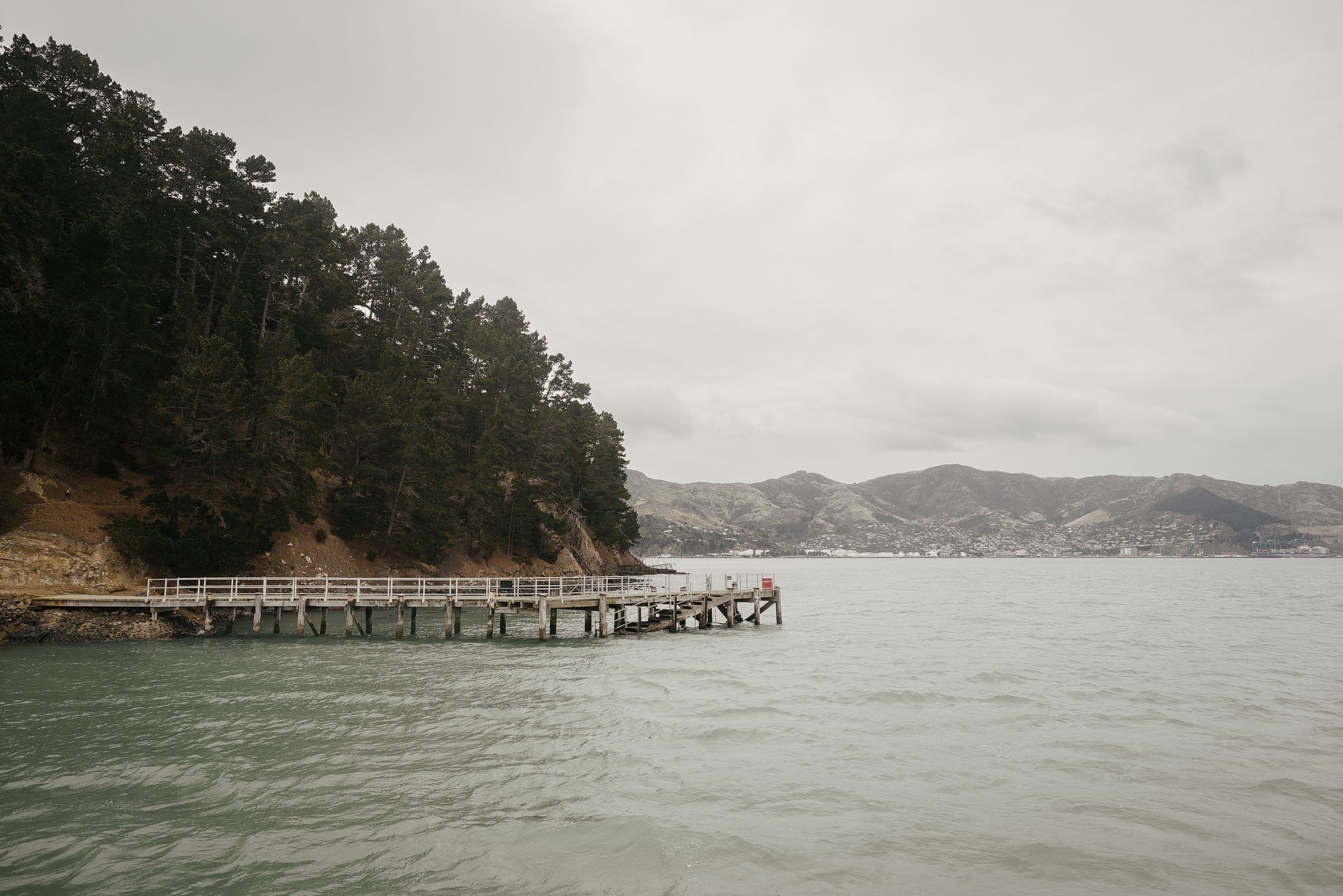 Quail island jetty - view from water