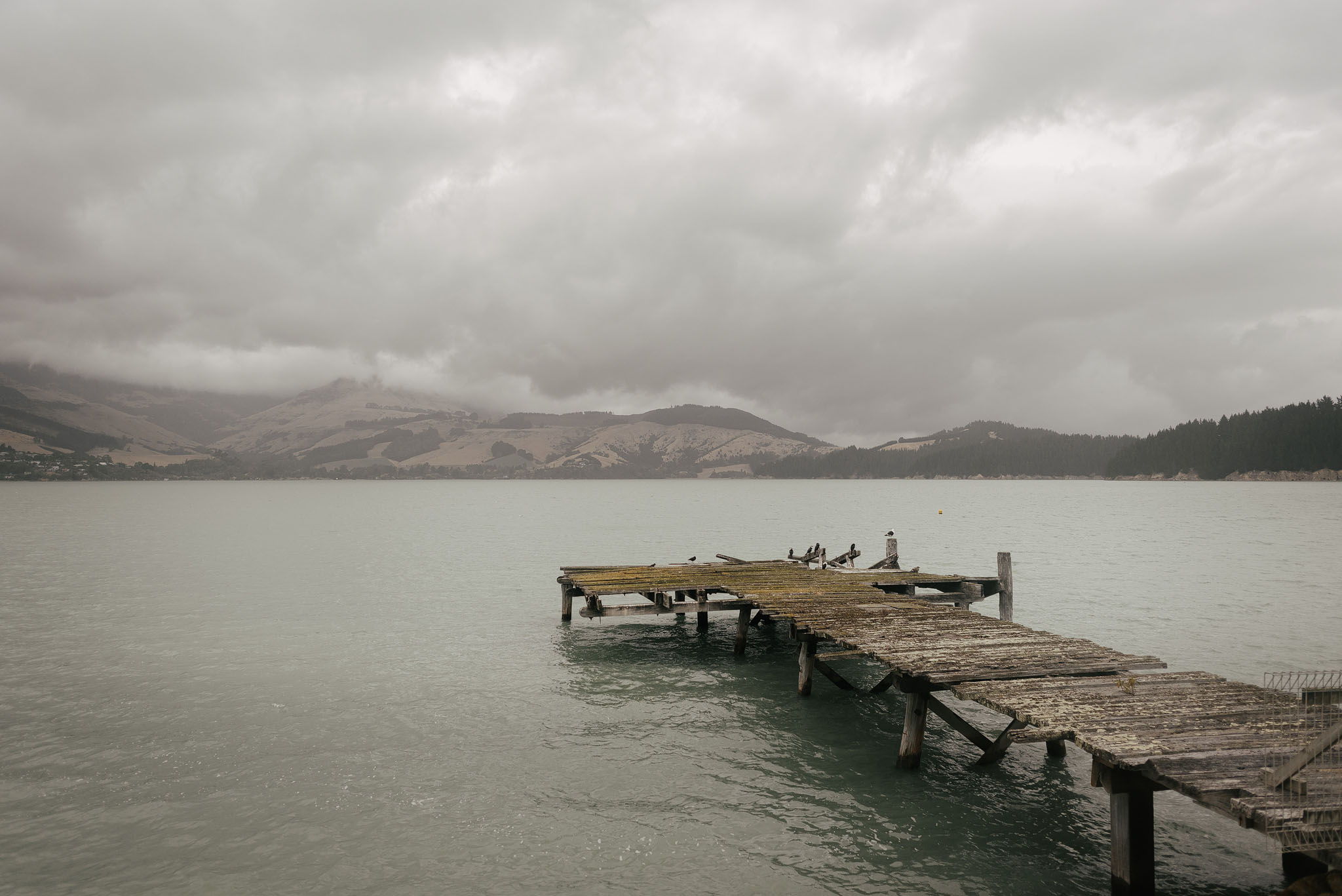 Quail Island old jetty on a rainy day